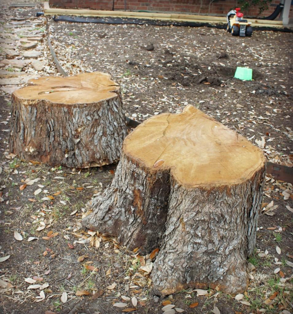 treestumptables