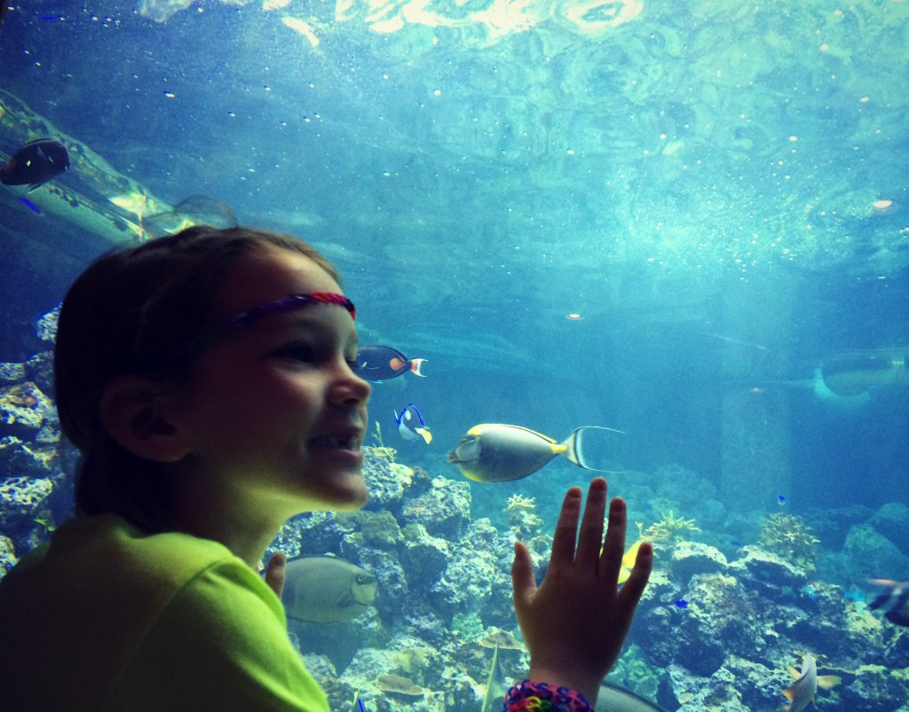maya at the aquarium