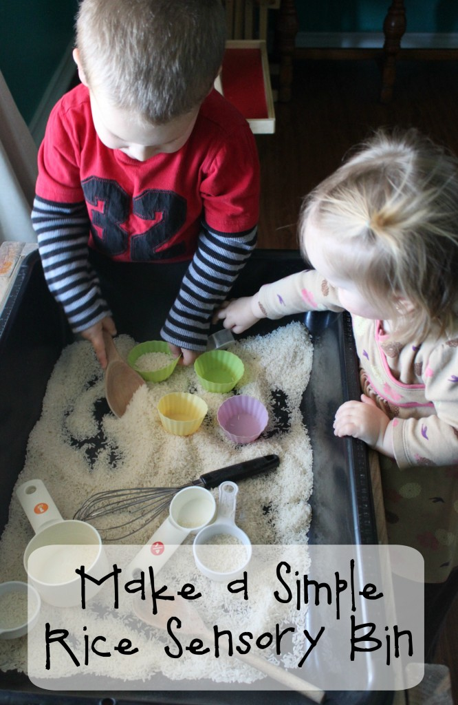 Make a Simple Rice Sensory Bin
