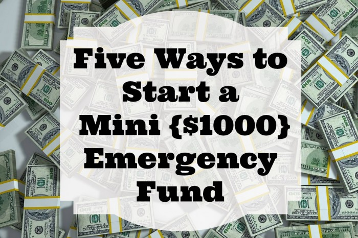 Five Ways to Start a Mini {$1000} Emergency Fund