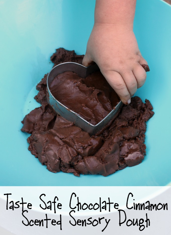Taste Safe Chocolate Cinnamon Scented Sensory Dough