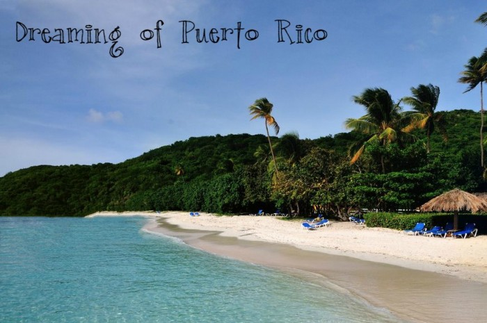 dreaming of Puerto Rico