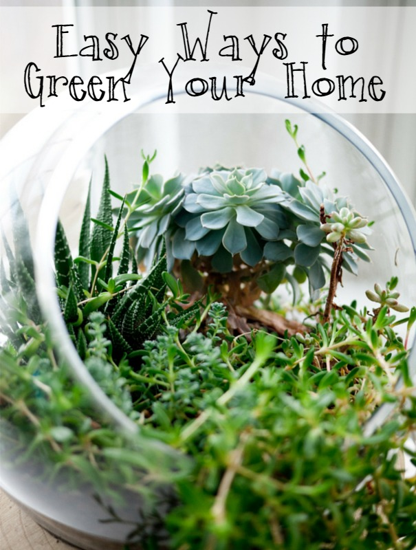 Easy Ways to Green Your Home